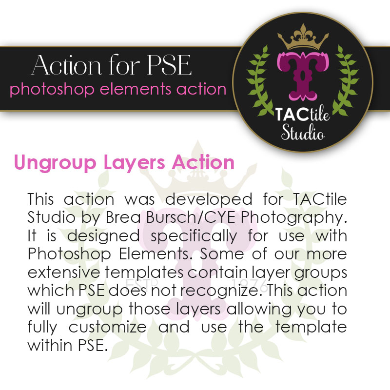 CYE's Ungroup Layers Action for PSE